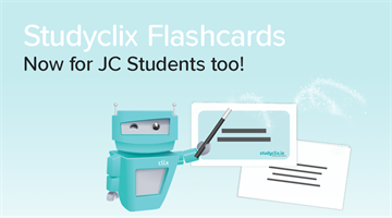 Thumbnail of Introducing: Junior Cert Flashcards for Students!