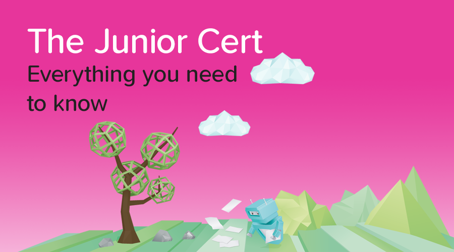 Banner of 5 things they don't tell you about the Junior Cert