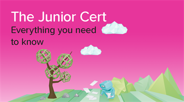 Thumbnail of 5 things they don't tell you about the Junior Cert
